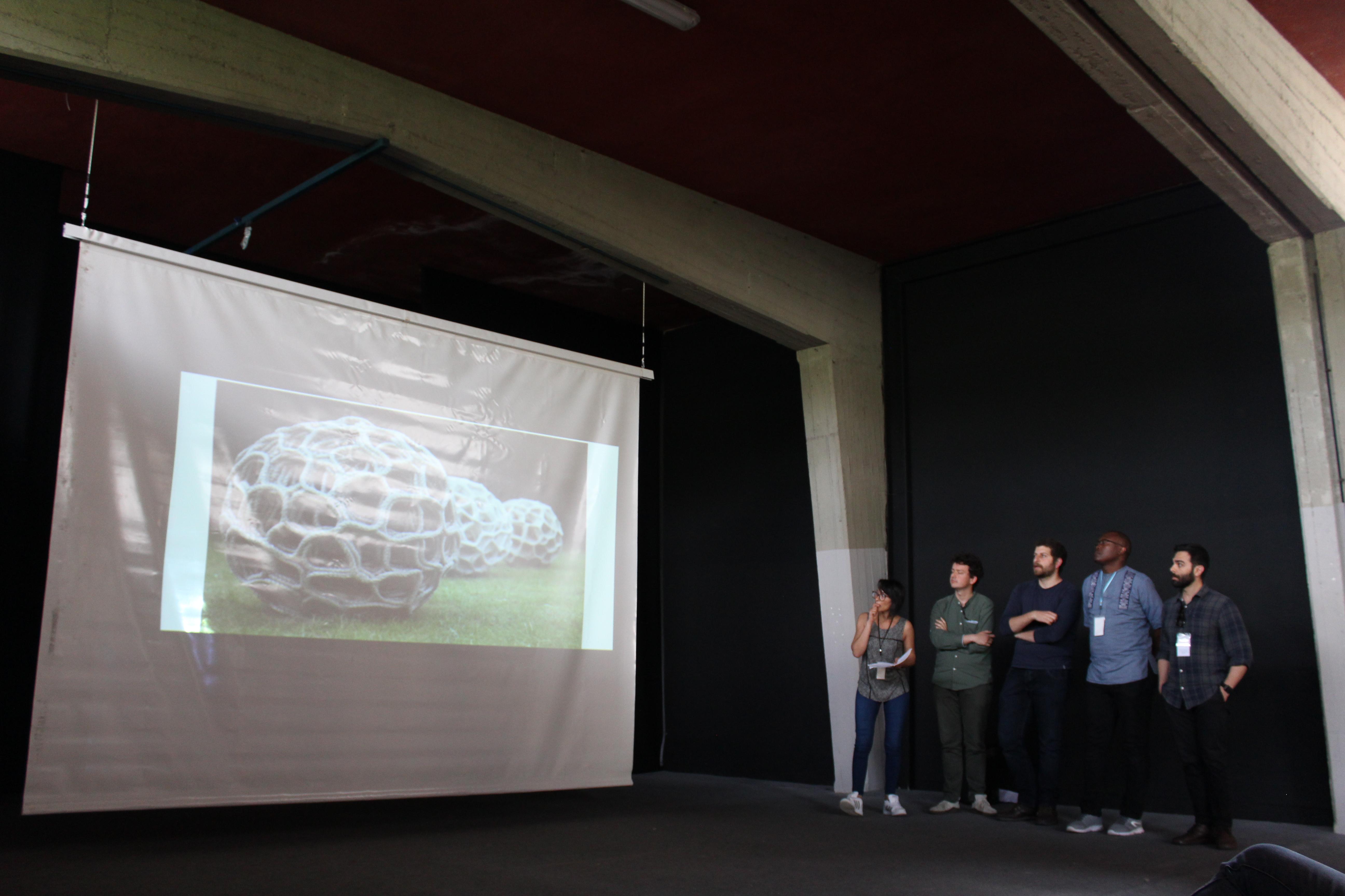 MIAGLIANO_presentazione progetti ws
